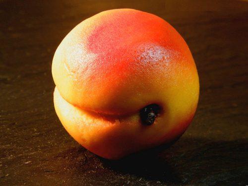 marzipanfigur-aprikose