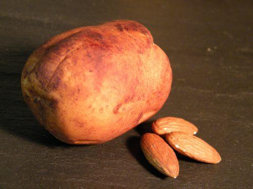 Martzipankartoffel groß